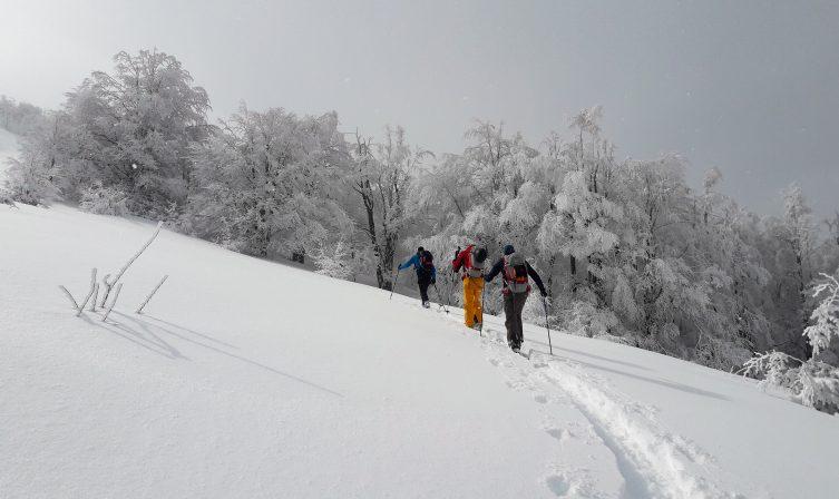 Ski Touring Deni12
