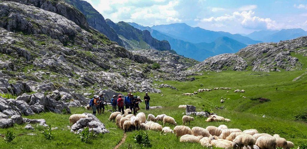 Peaks Of The Balkans 202013