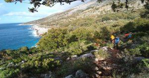 Shen Andreu Beach 04 1200x628