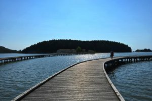Island of Zvernec